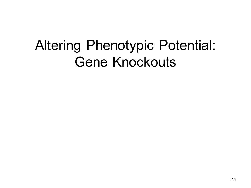 Altering Phenotypic Potential: Gene Knockouts