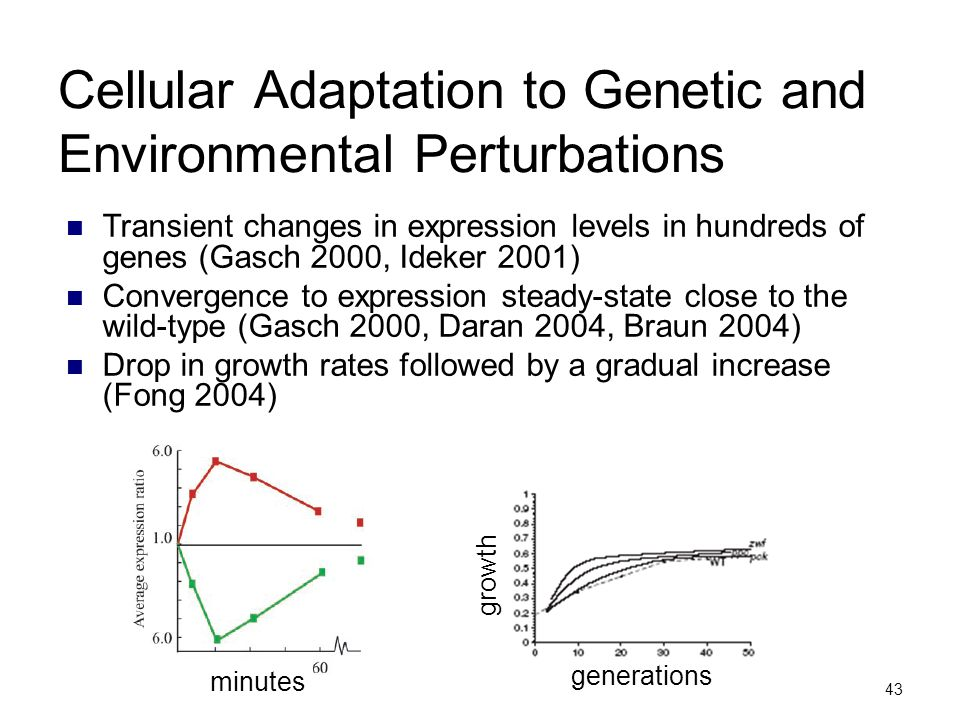 Cellular Adaptation to Genetic and Environmental Perturbations