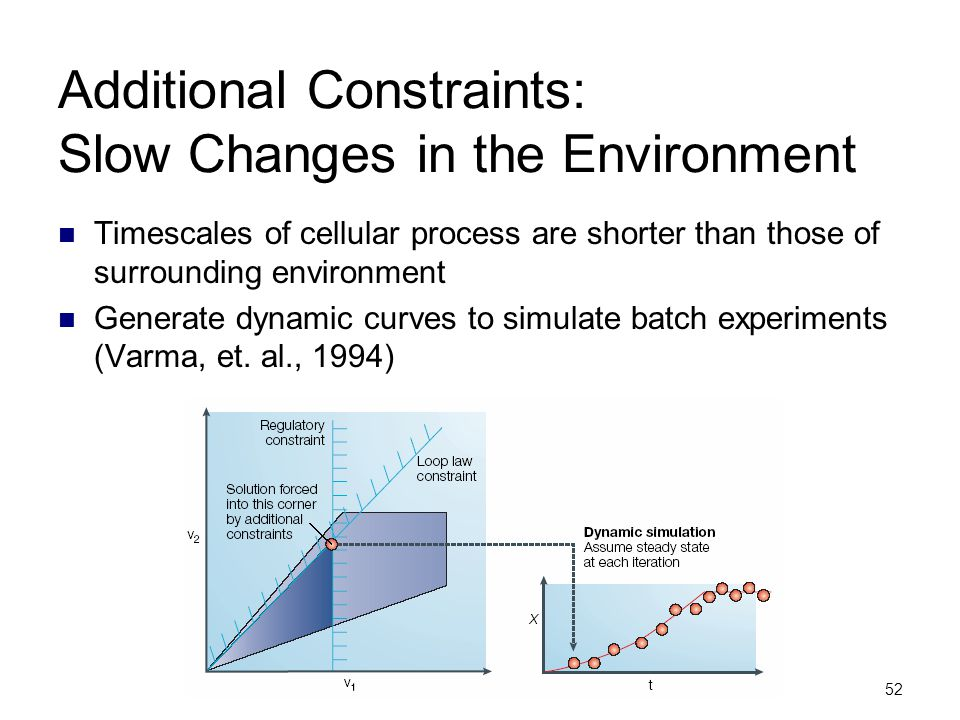 Additional Constraints: Slow Changes in the Environment