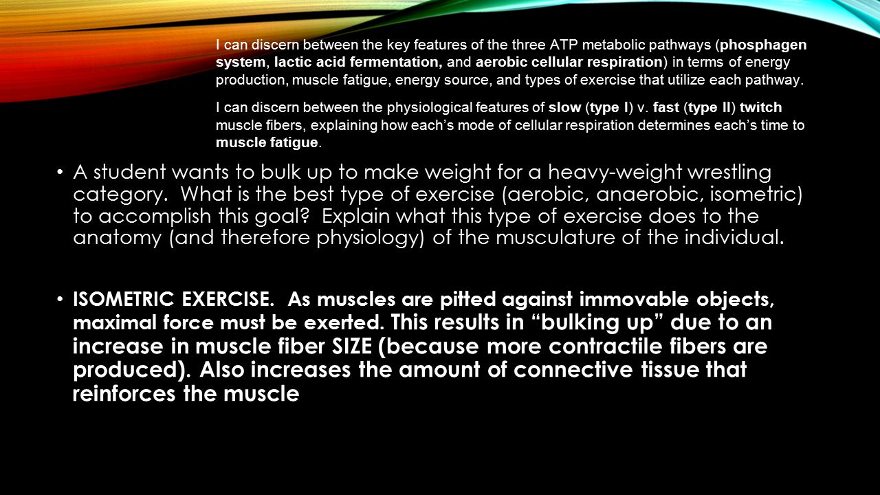 I can discern between the key features of the three ATP metabolic pathways (phosphagen system, lactic acid fermentation, and aerobic cellular respiration) in terms of energy production, muscle fatigue, energy source, and types of exercise that utilize each pathway. I can discern between the physiological features of slow (type I) v. fast (type II) twitch muscle fibers, explaining how each's mode of cellular respiration determines each's time to muscle fatigue.