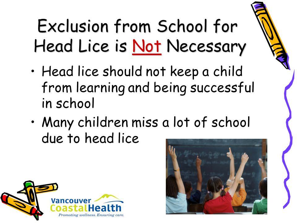 Exclusion from School for Head Lice is Not Necessary