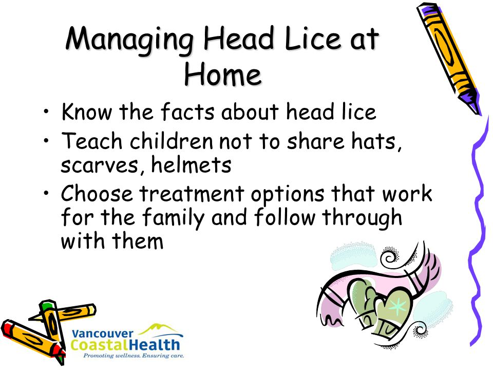 Managing Head Lice at Home