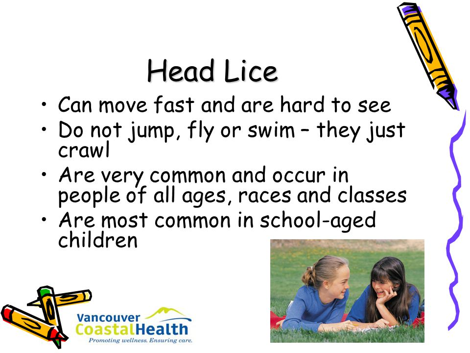 Head Lice Can move fast and are hard to see
