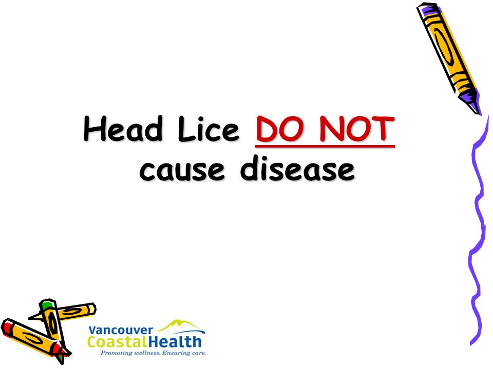 Head Lice DO NOT cause disease