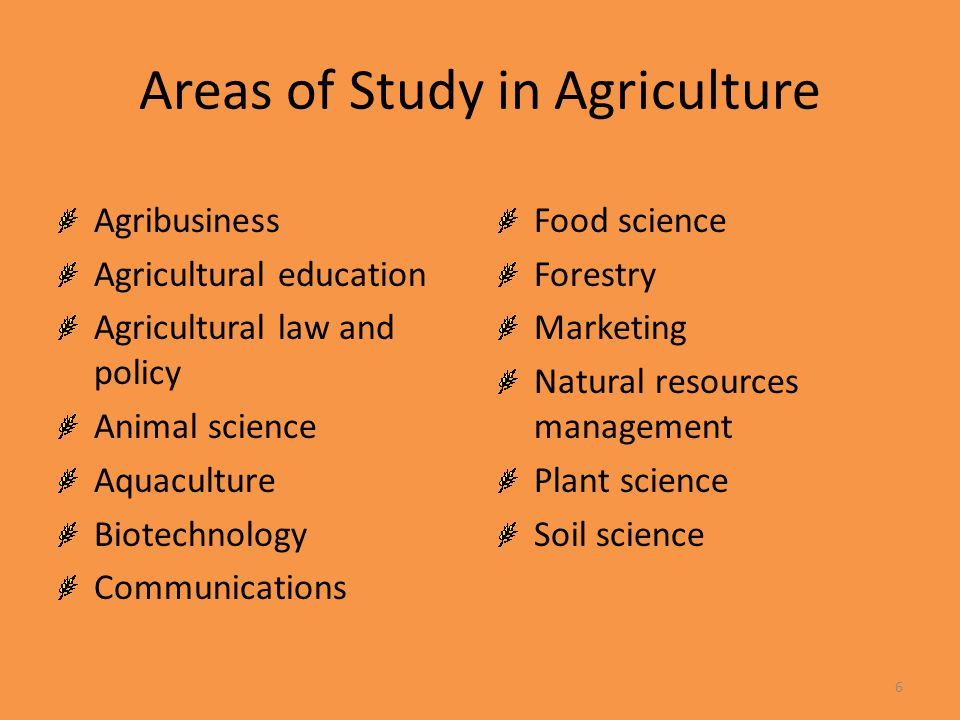 Areas of Study in Agriculture