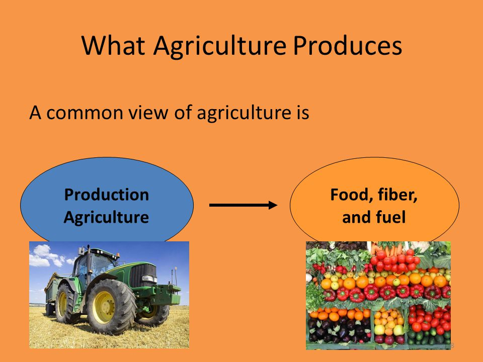 What Agriculture Produces