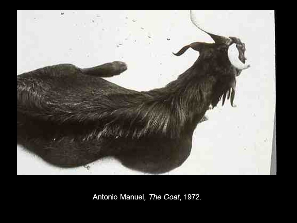 Antonio Manuel, The Goat, 1972.