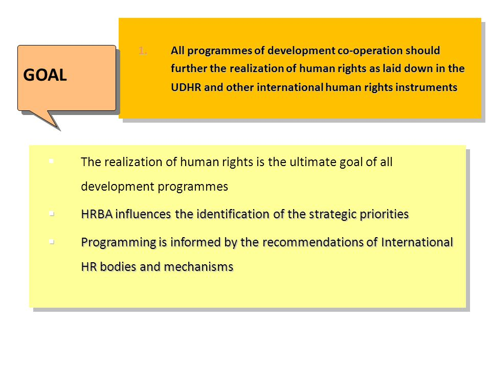 All programmes of development co-operation should further the realization of human rights as laid down in the UDHR and other international human rights instruments
