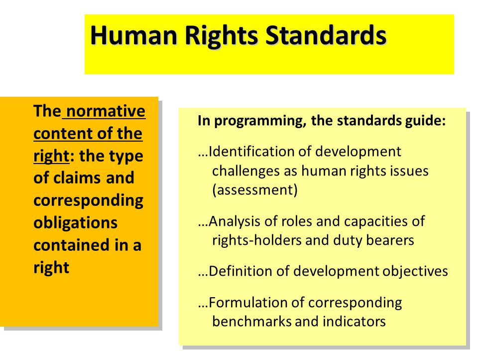 Human Rights Standards