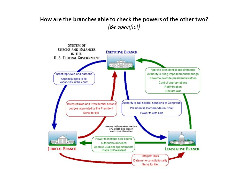 How are the branches able to check the powers of the other two