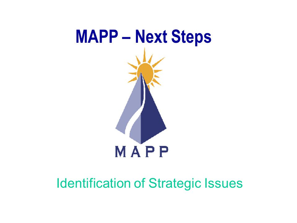 Identification of Strategic Issues