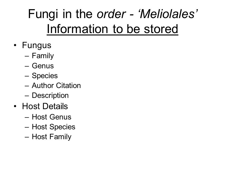 Fungi in the order - 'Meliolales' Information to be stored