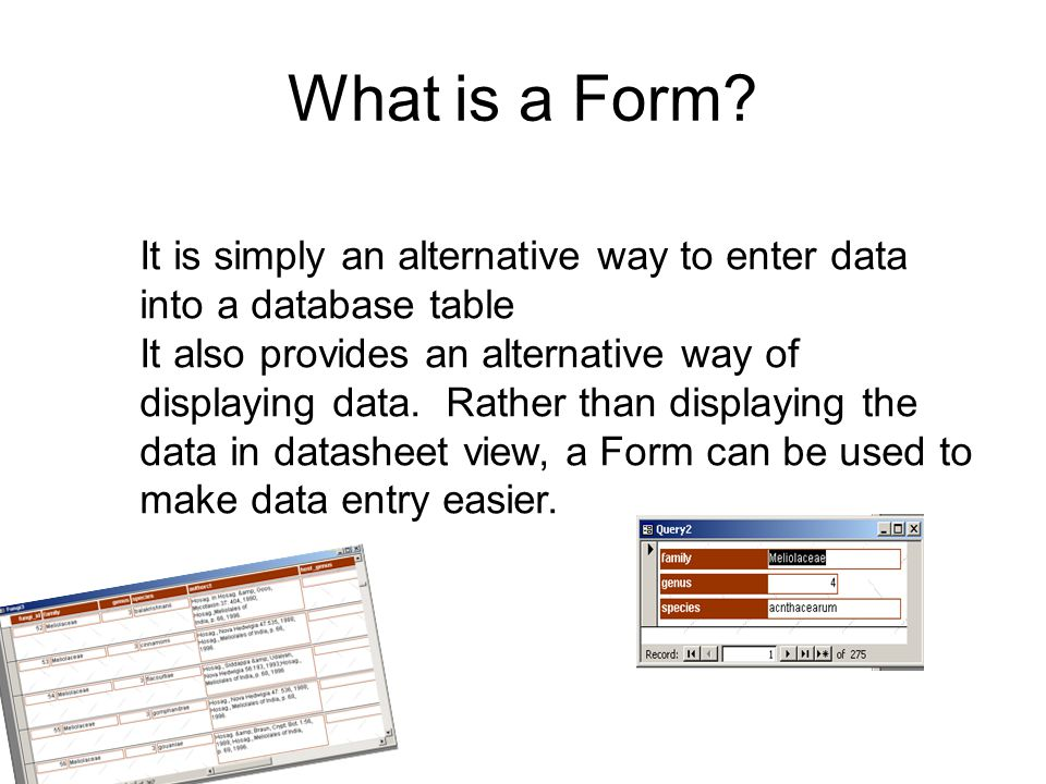 What is a Form