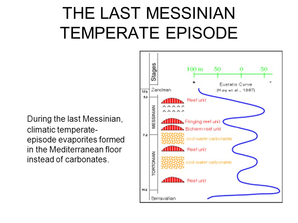 THE LAST MESSINIAN TEMPERATE EPISODE