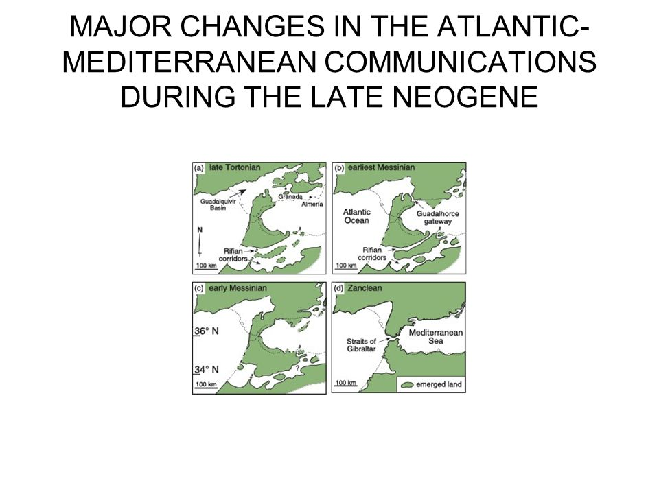 MAJOR CHANGES IN THE ATLANTIC-MEDITERRANEAN COMMUNICATIONS DURING THE LATE NEOGENE