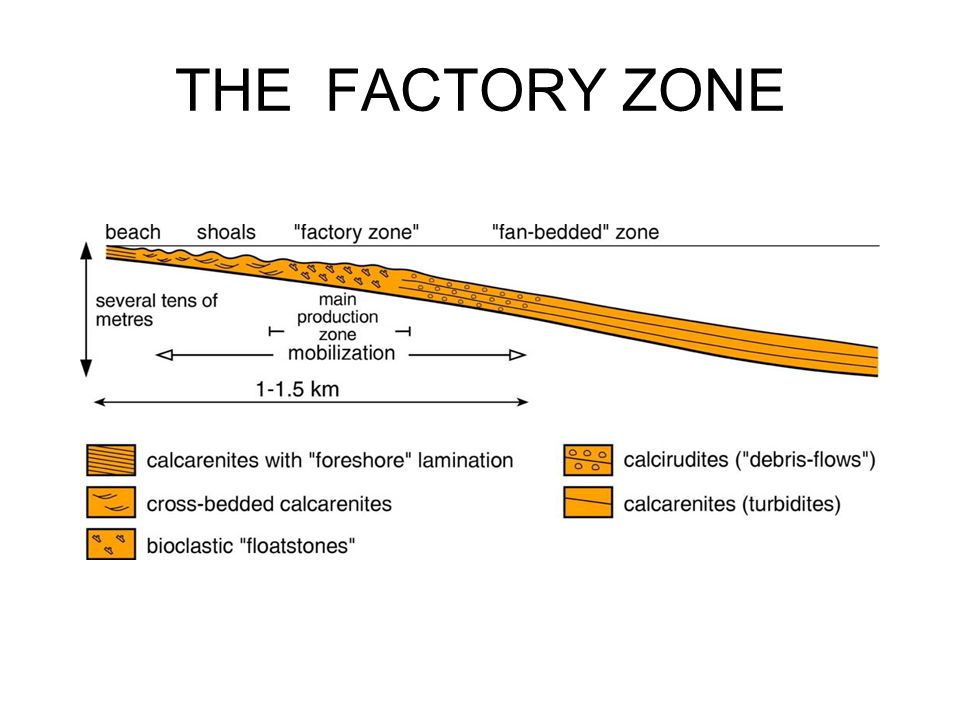 THE FACTORY ZONE