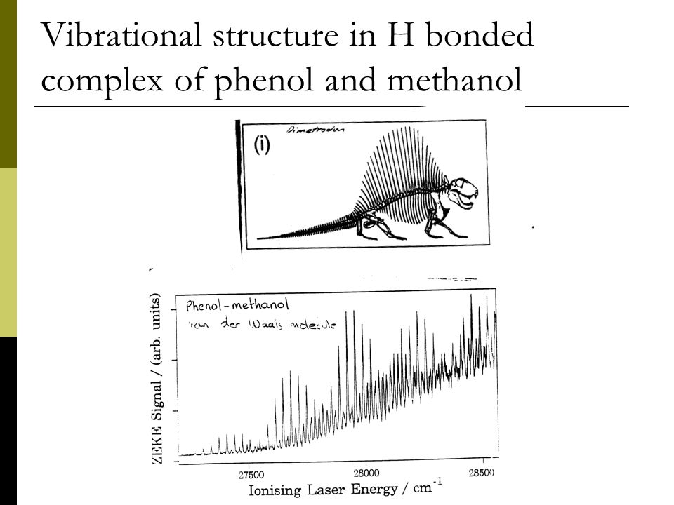 Vibrational structure in H bonded complex of phenol and methanol