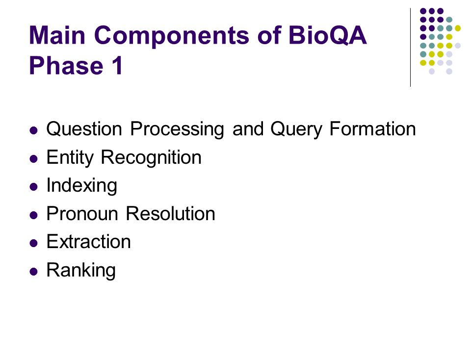 Main Components of BioQA Phase 1