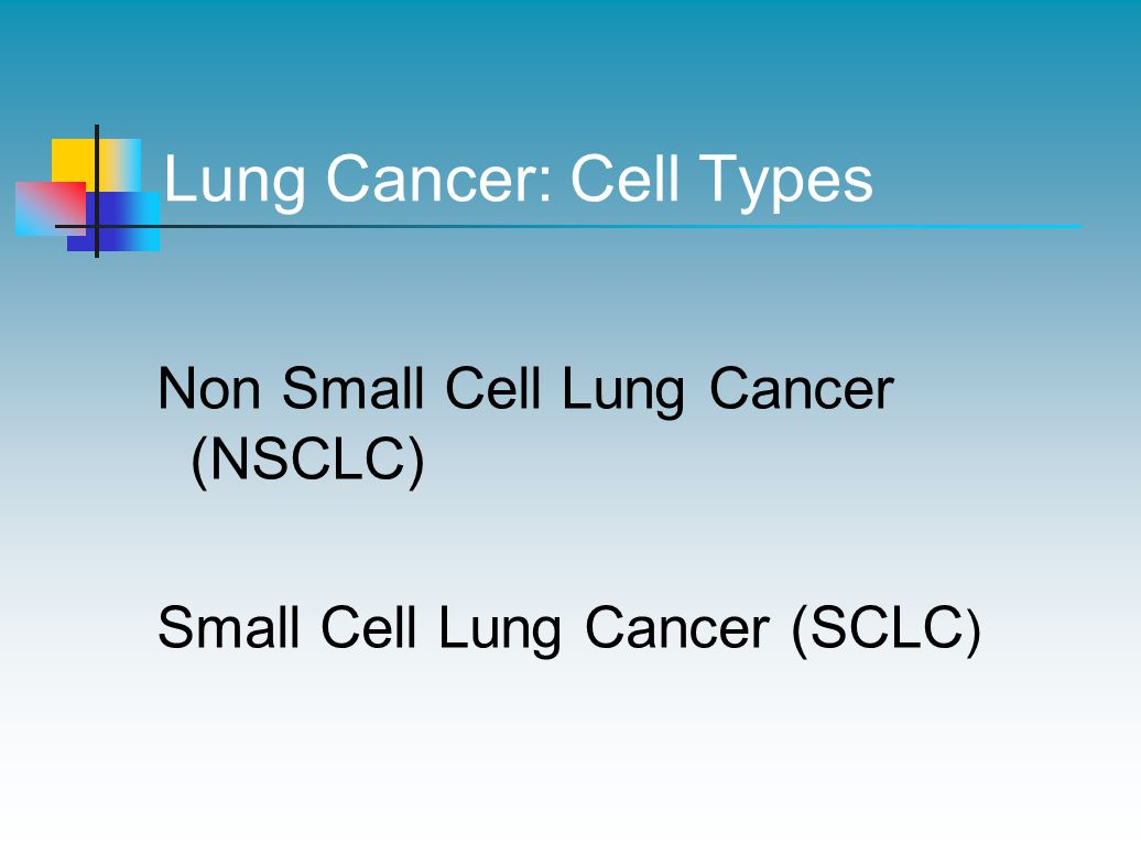 Lung Cancer: Cell Types