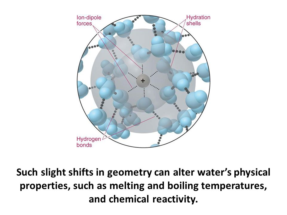 Such slight shifts in geometry can alter water's physical properties, such as melting and boiling temperatures, and chemical reactivity.
