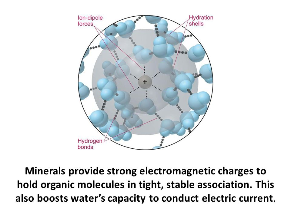 Minerals provide strong electromagnetic charges to hold organic molecules in tight, stable association. This also boosts water's capacity to conduct electric current.