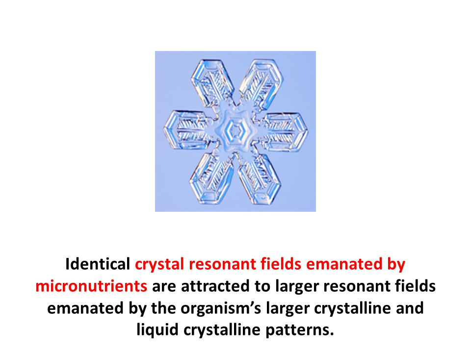 Identical crystal resonant fields emanated by micronutrients are attracted to larger resonant fields emanated by the organism's larger crystalline and liquid crystalline patterns.