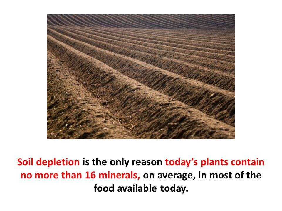 Soil depletion is the only reason today's plants contain no more than 16 minerals, on average, in most of the food available today.
