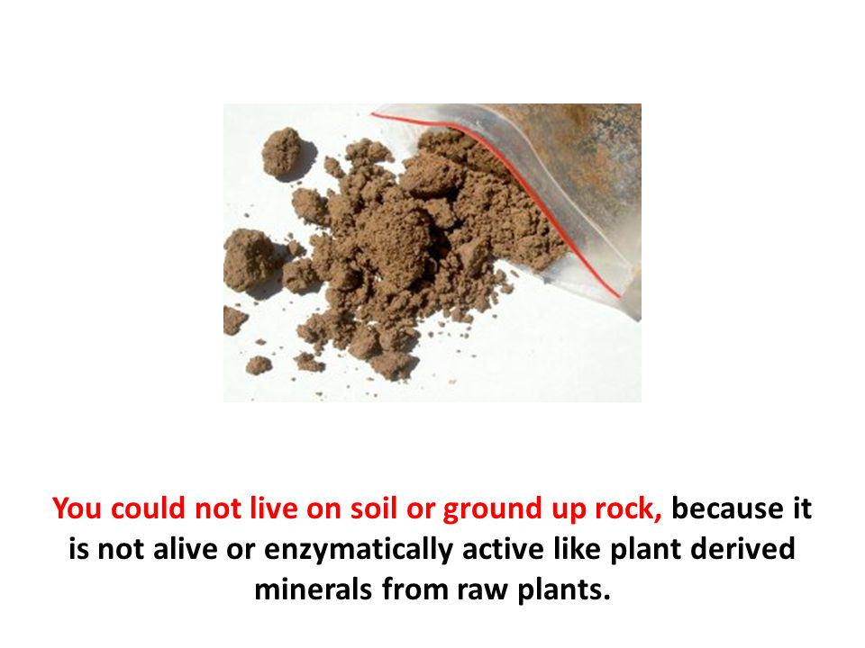 You could not live on soil or ground up rock, because it is not alive or enzymatically active like plant derived minerals from raw plants.
