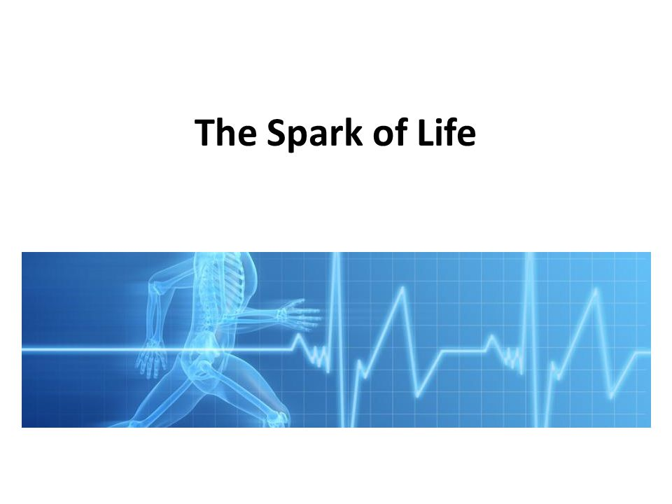 The Spark of Life The Spark of Life