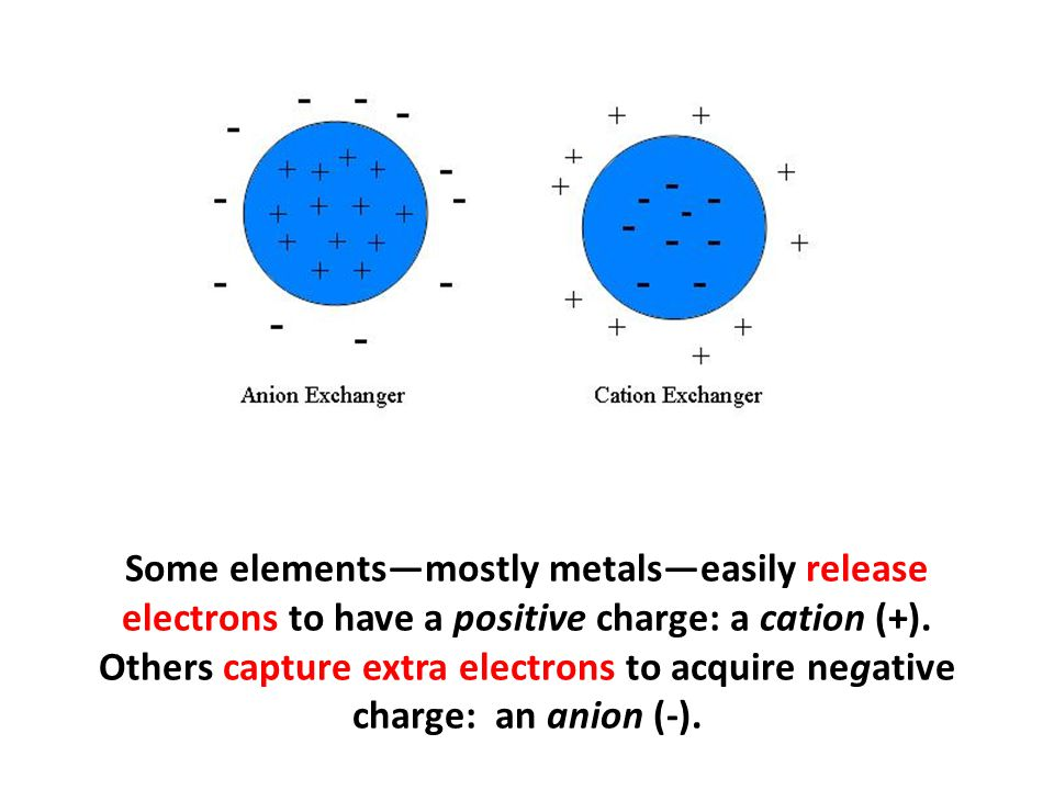 Some elements—mostly metals—easily release electrons to have a positive charge: a cation (+). Others capture extra electrons to acquire negative charge: an anion (-).
