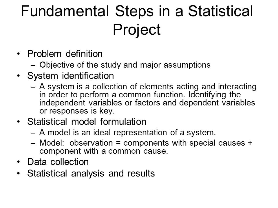 Fundamental Steps in a Statistical Project