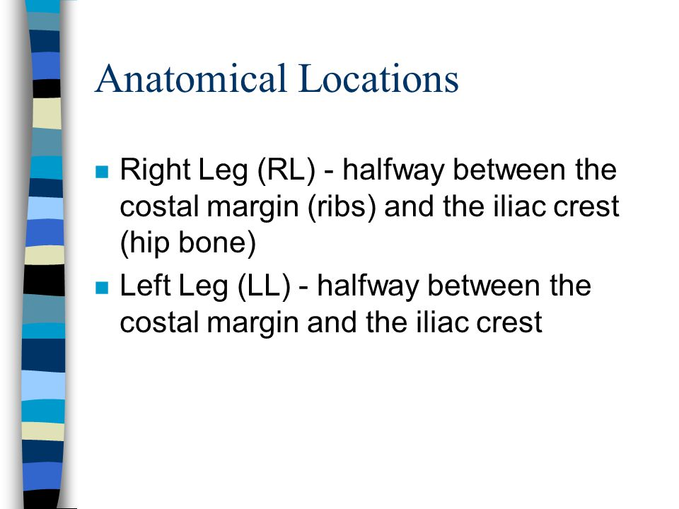 Anatomical Locations Right Leg (RL) - halfway between the costal margin (ribs) and the iliac crest (hip bone)