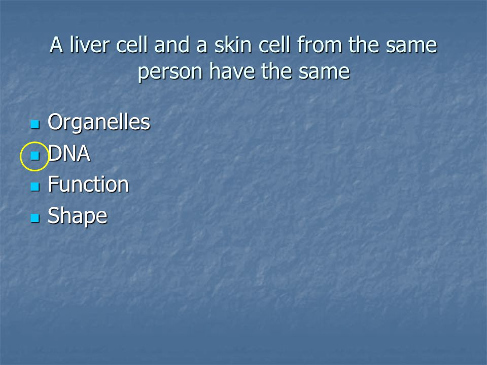 A liver cell and a skin cell from the same person have the same