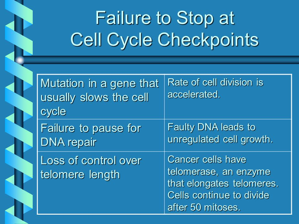 Failure to Stop at Cell Cycle Checkpoints