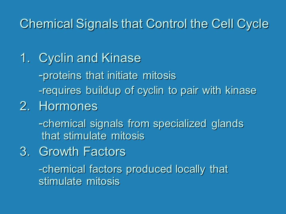 Chemical Signals that Control the Cell Cycle