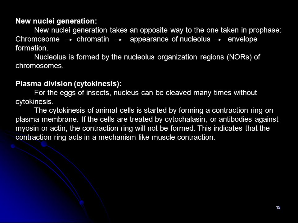 New nuclei generation: