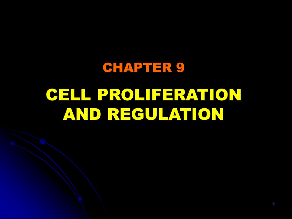 CELL PROLIFERATION AND REGULATION