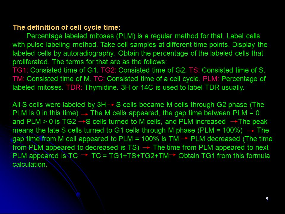 The definition of cell cycle time: