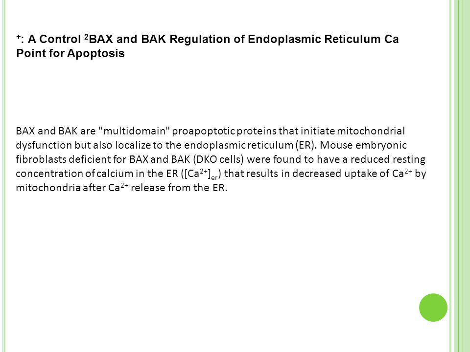 BAX and BAK Regulation of Endoplasmic Reticulum Ca2+: A Control Point for Apoptosis