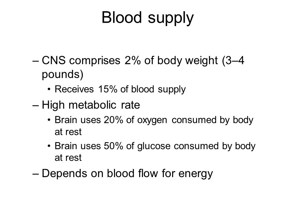 Blood supply CNS comprises 2% of body weight (3–4 pounds)