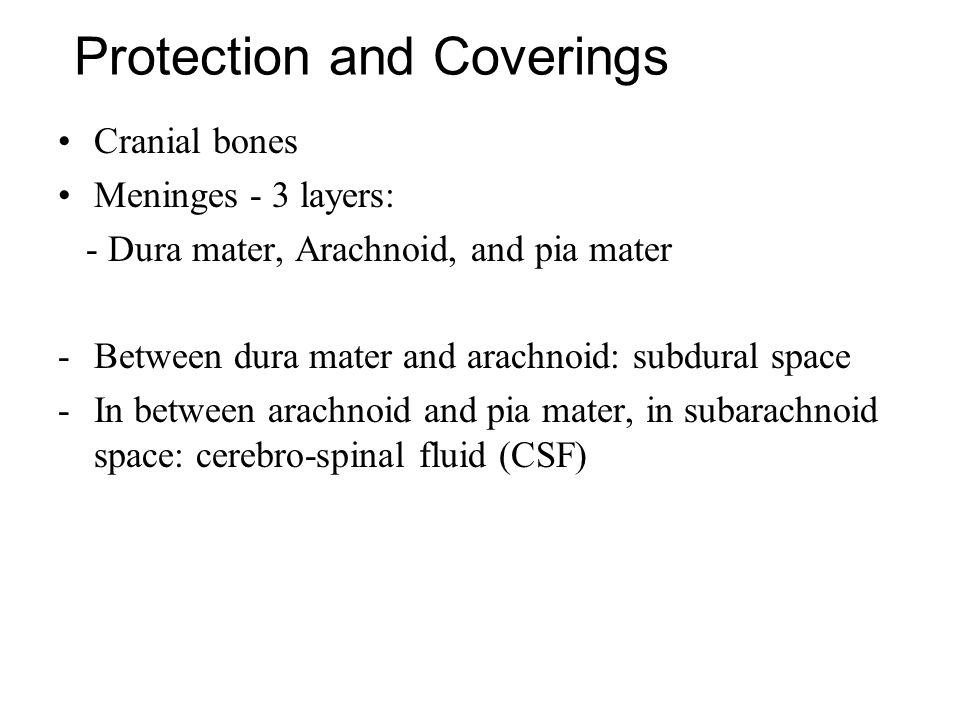 Protection and Coverings