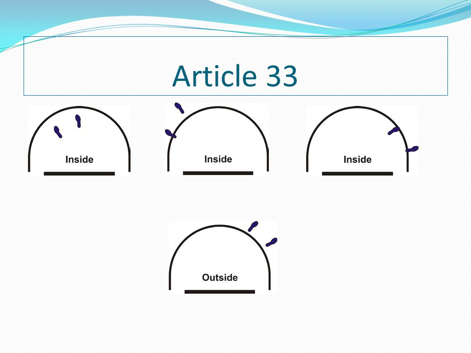 Article 33