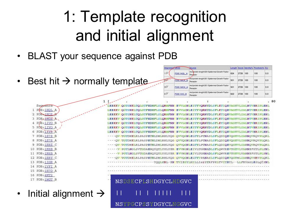 1: Template recognition and initial alignment