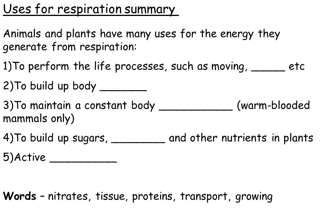 Uses for respiration summary