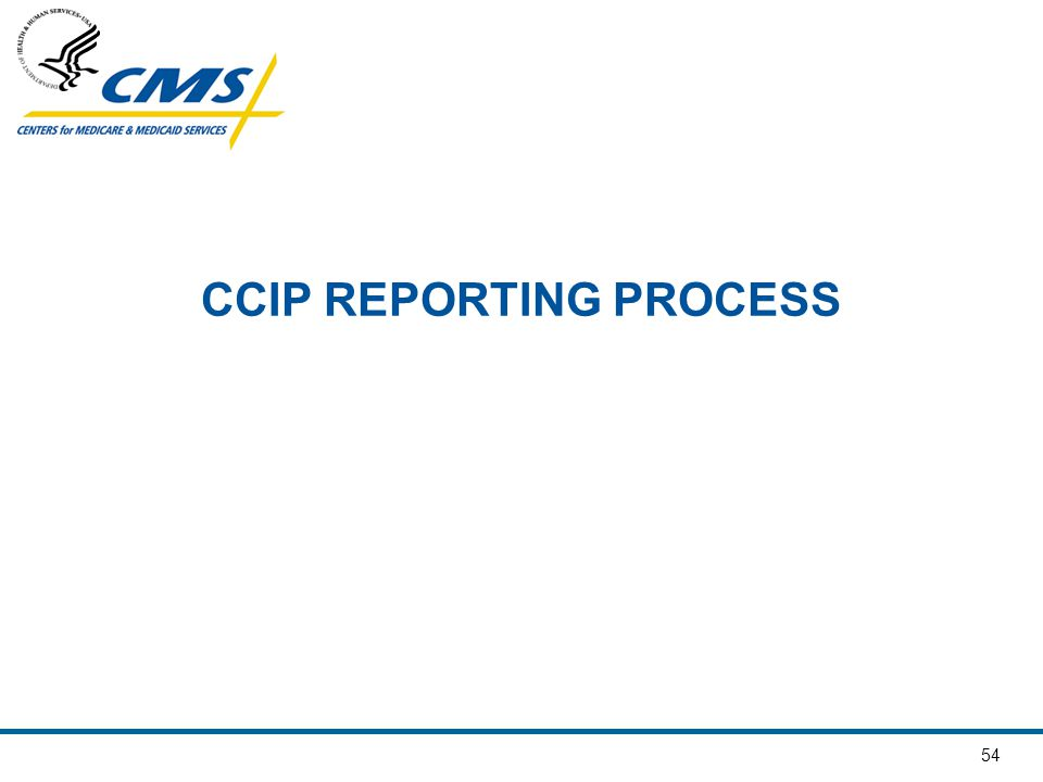 CCIP REPORTING PROCESS