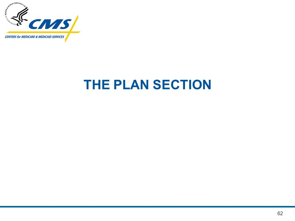 THE PLAN SECTION