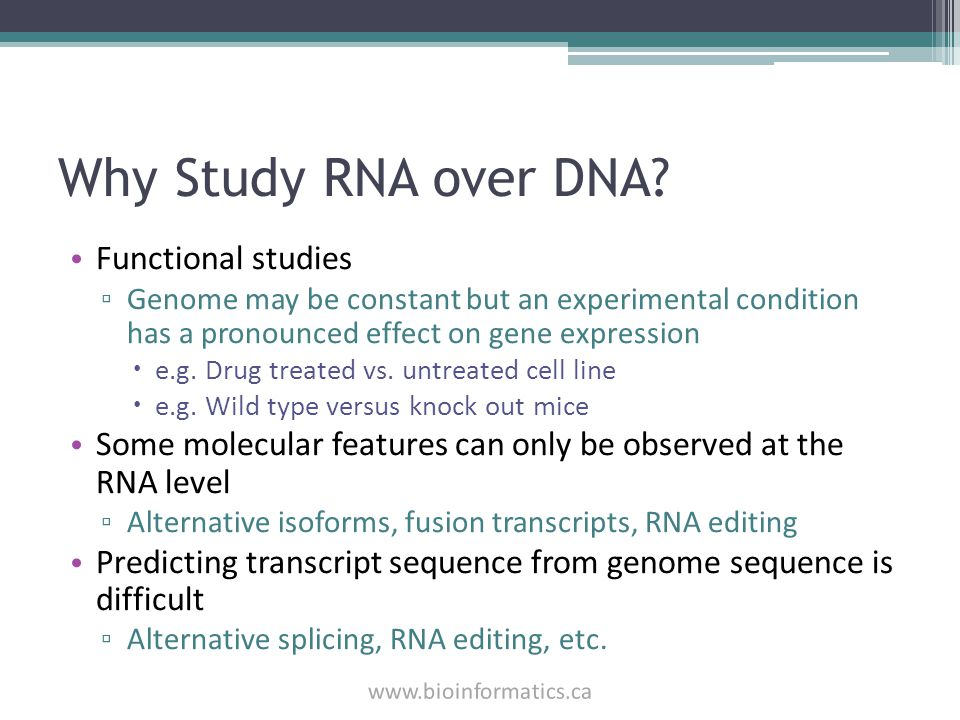 Why Study RNA over DNA Functional studies