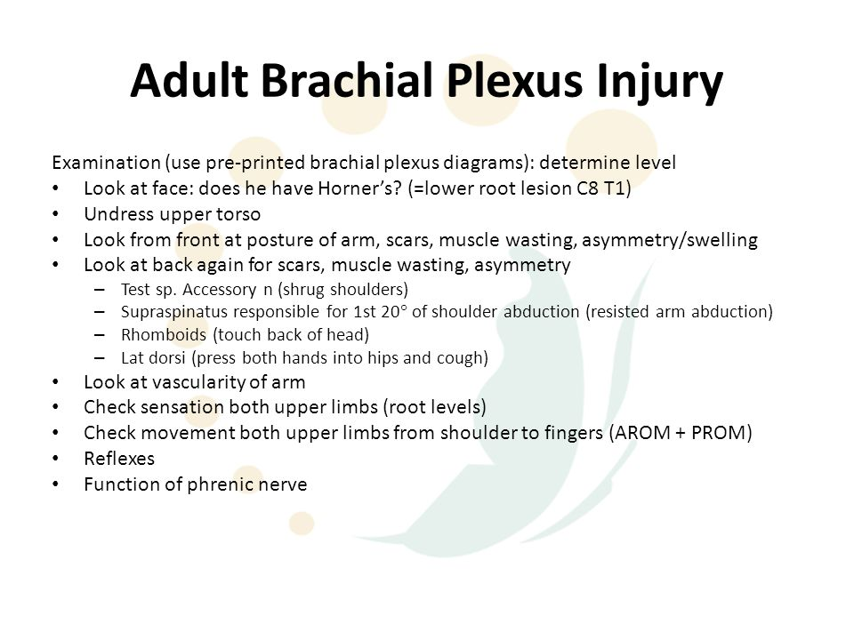 Brachial Plexus Injuries - ppt video online download