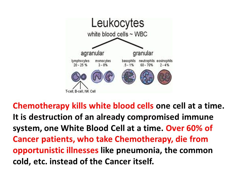 Chemotherapy kills white blood cells one cell at a time