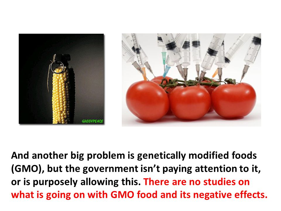 And another big problem is genetically modified foods (GMO), but the government isn't paying attention to it, or is purposely allowing this. There are no studies on what is going on with GMO food and its negative effects. They don't want us to know because it will affect business and foul the eugenic global depopulation plans.